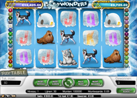 icy wonders video slot